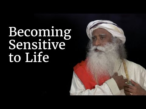 Becoming Sensitive to Life