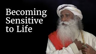 Becoming Sensitive to Life