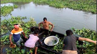 new latest fish catching video - নৌকার মাধ্যমে মাছ ধরার ভিডিও