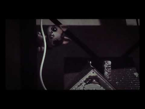 LPS Kc undercover song enjoy