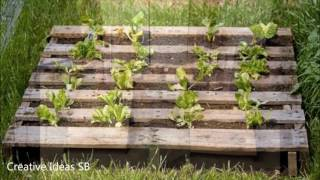New 50 Creative DIY PALLET Bed Couch Sofa Table Ideas 2016 - Cheap Recycled - Amazing Designs 2 -ne