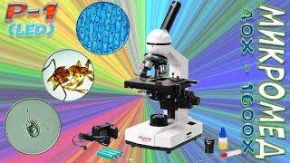 видео Микроскопы