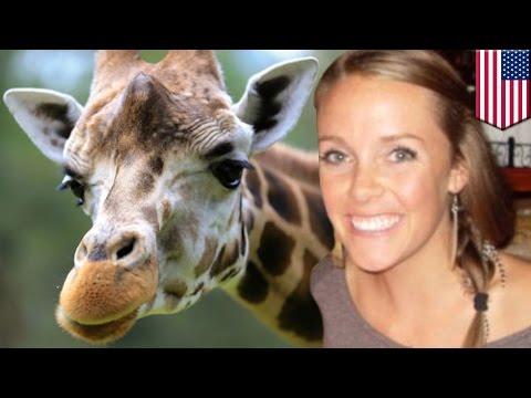 Giraffe kicks woman: Amanda Hall climbed over fence at Henry Vilas Zoo in Madison