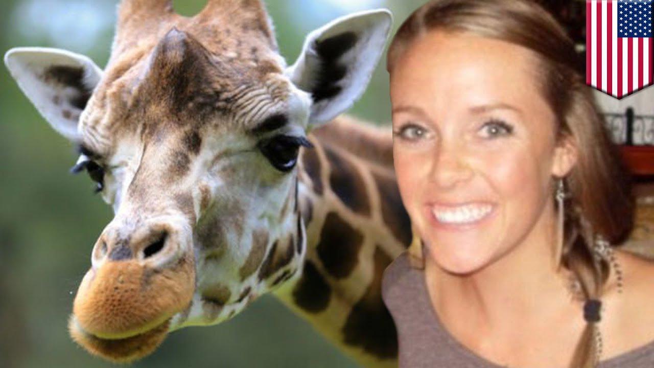 Death Girl Wallpaper Giraffe Kicks Woman Amanda Hall Climbed Over Fence At