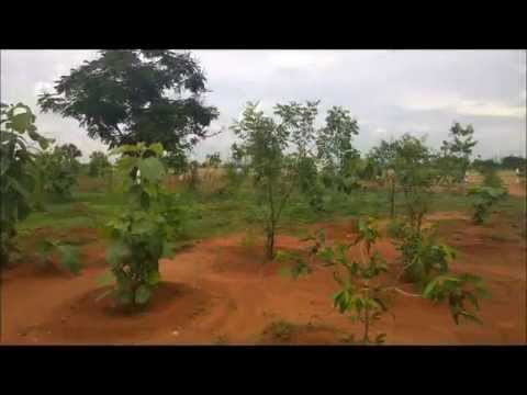 Aero City Garden Plots Near Madurai international Airport