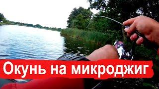 Рыбалка на окуня микроджиг р Воронеж