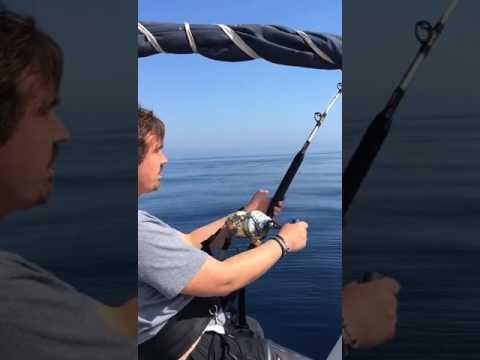 Pesca atún brumeo. Cala d'or