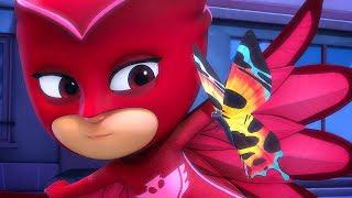 PJ Masks Super Pigiamini | Gattoboy e la Brigata Farfalle | Nuovi Episodi | Cartoni Animati