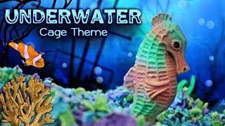 🐟 UNDERWATER Hamster Cage Theme! (Kashi's Playcage)