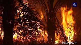 حرائق جديدة في غابات الأمازون (25/8/2019)