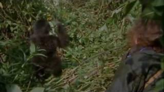 Gorillas In The Mist Trailer HD