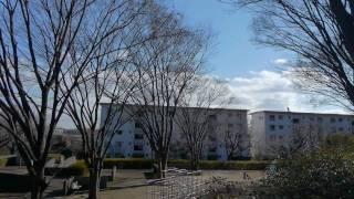 映画【耳を澄ませば】の舞台になった聖蹟桜ヶ丘周辺の町に行ってみました。辺りは緑が多くて、物語に実際に登場した場所もたくさんありまし...