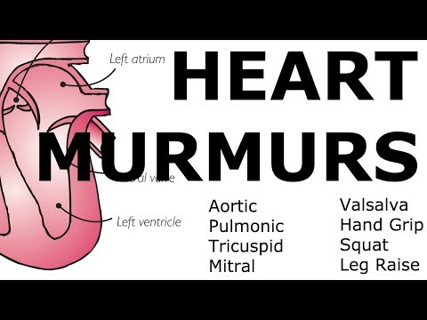 Heart Murmurs  Locations, Maneuvers, Buzzwords