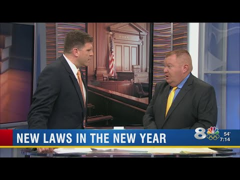 New Florida Laws in 2018: Minimum wage and parent time-sharing plans