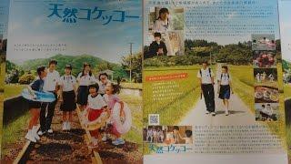 天然コケッコー 2007 映画チラシ A Gentle Breeze in the Village 2007...
