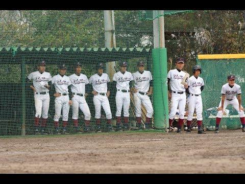 年(第101回)全国高校野球選手権埼玉大会  …
