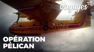Opération Pélican, a bord d'un canadair-bombardier d'eau - Documentaire Thalassa