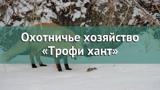 Охота в Красноярском крае – Охотничье хозяйство «Трофи хант» охота на Северного оленя Дикого