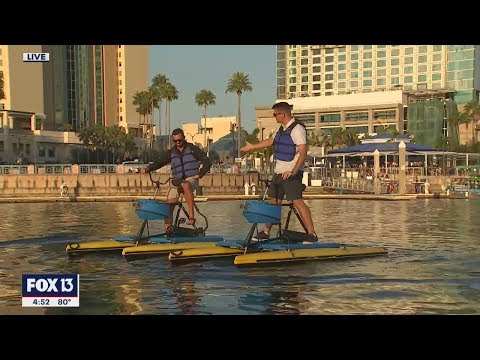 Biking Meets Boating In Downtown Tampa