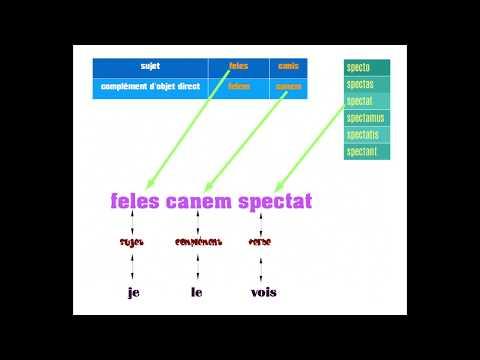 Introduction au latin