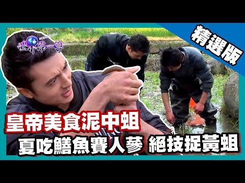 【陝西】皇帝美食泥中黃蛆 巧勁直搗鱔魚巢穴|《世界第一等》653集精華版