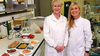 BBC The Truth About Healthy Eating 2016 - Best Documentaries