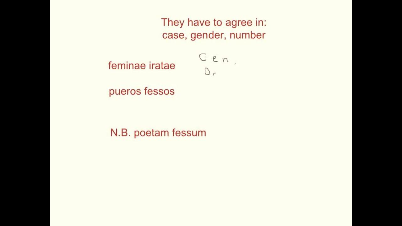 Latin Noun Adjective Agreement