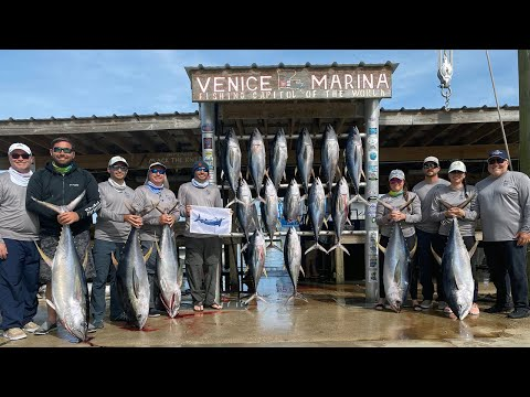 Yellowfin Tuna Fishing - Venice, Louisiana