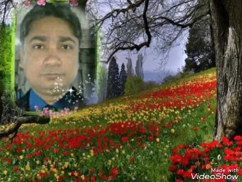 Shayari Zakhmi Dil Hindi Salahuddin