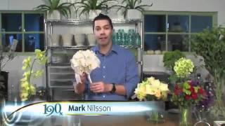 190 North (ABC7 Chicago) -- Unique Wedding Bouquets
