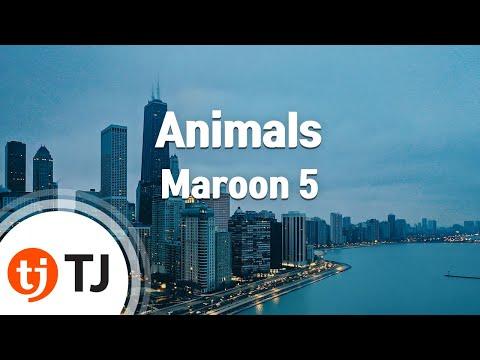 Animals_Maroon 5_TJ노래방 (Karaoke/lyrics/romanization/KOREAN)