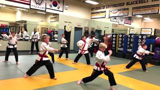Red to Black Belt Focused Instruction: Intermediate and Advanced Forms!
