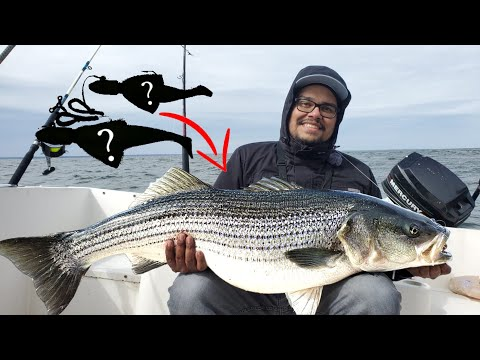 Looking For TROPHY STRIPERS! March Fishing In MARYLAND, CHESAPEAKE BAY
