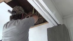 """Live Honey Bee Removal"" (Without A Bee Vac)"
