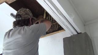 Bee Removal Without A Bee Vac