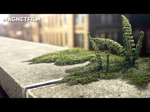 Wrapped | A Short Film by Roman Kälin, Falko Paeper & Florian Wittmann
