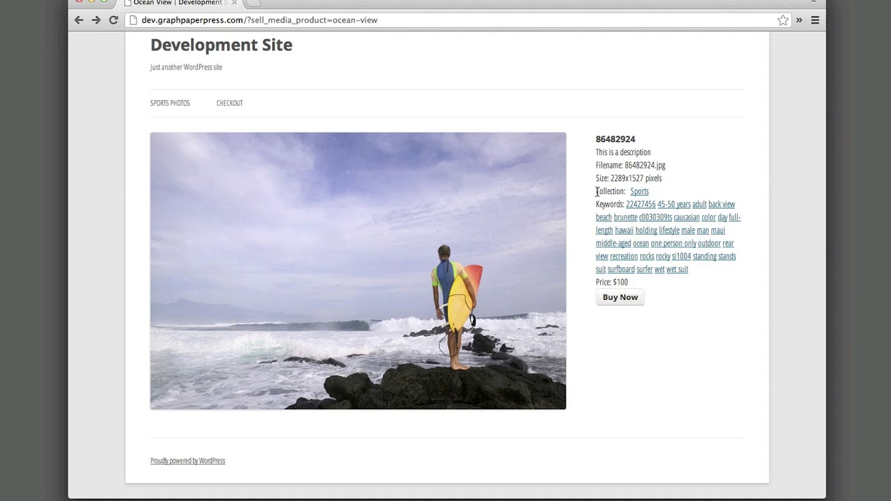 eCommerce solutions for photographers: how to sell images on