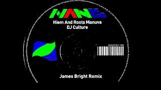 Hiem And Roots Manuva - DJ Culture ( James Bright Remix)