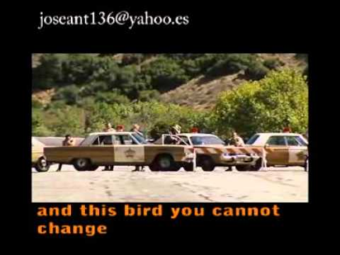 free bird lynyrd skynyrd letra lyrics