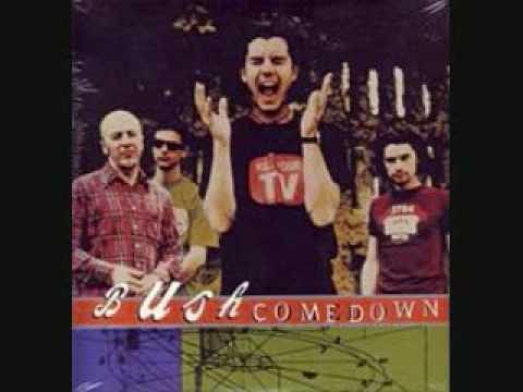 bush-come-down-the-natives