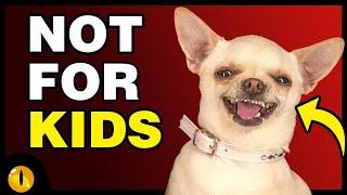 TOP 10 WORST DOG BREEDS FOR KIDS