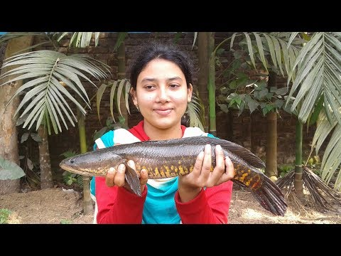 Cooking Murrel Fish Recipe With Cauliflower | Prepared By Street Village Food
