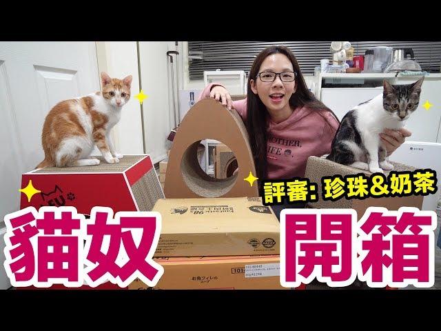 開箱超多貓咪商品! 這些食物跟玩具珍珠奶茶會喜歡嗎?! ♥ 滴妹