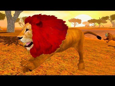 СИМУЛЯТОР ДИКОЙ КОШКИ #26 Новый СИМ ЛЬВА ! Кид стал котенком львом #ПУРУМЧАТА