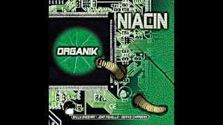 Niacin -  Barbarian @ the Gate