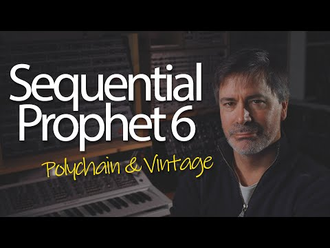 Sequential Prophet 6 - Polychain and Vintage