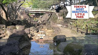 Tokyo's MOST BEAUTIFUL little park | Sights and sounds walking tour