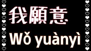 王菲【我願意】I'm Willing (KTV with Pinyin)