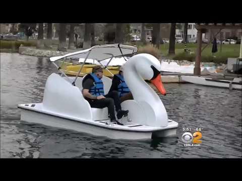 Swan Boats at Echo Park Wheel Fun Rentals CBS 2
