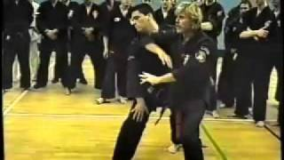 Larry Tatum - American Kenpo Karate Workshop part1